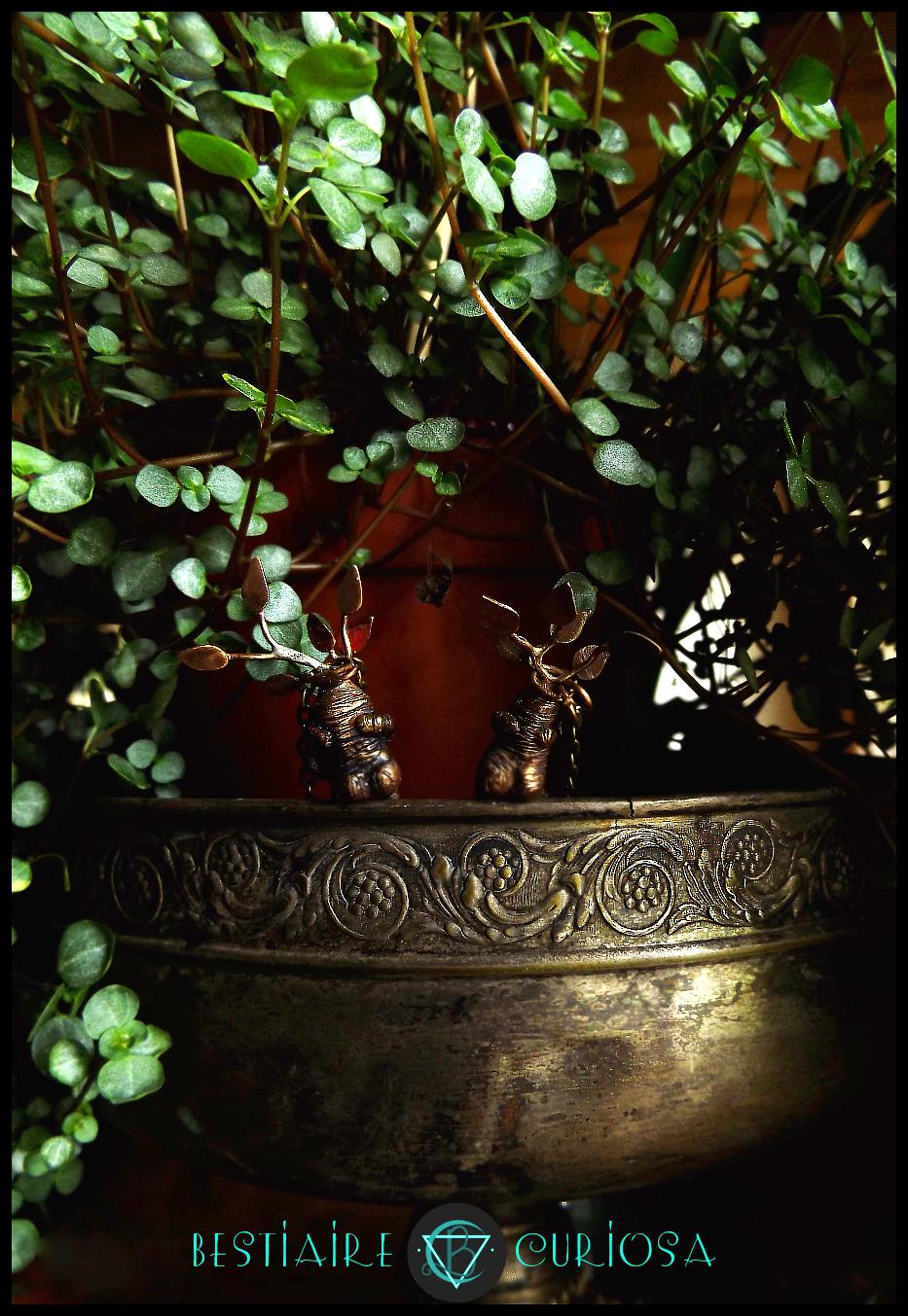 locket boîte secret box goth gothic wicca witchy poudlard hogwarts bestiaire curiosa harry potter newt scamander hermione animaux fantastiques fantastic beasts occult mystic mysterious albus dumbledore caput draconis bijou d'auteur bijou d'art cottage core cottagecore witch labradorite crystal tarot esoterisme white magic magie blanche altar autel grimoire spellbook mandragore mandrake root herbologie herbology