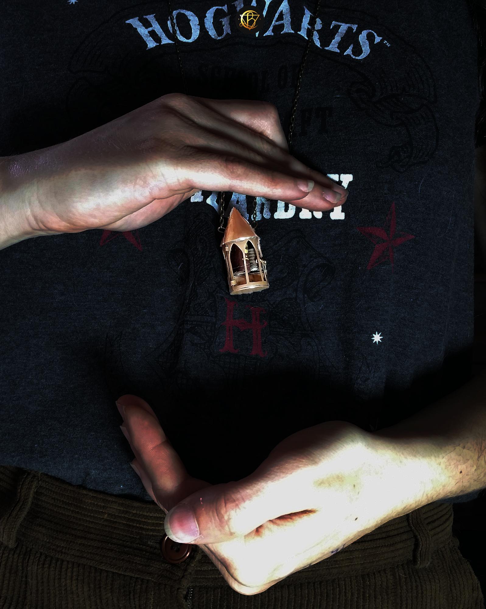locket boîte secret box goth gothic wicca witchy poudlard hogwarts bestiaire curiosa harry potter newt scamander hermione animaux fantastiques fantastic beasts occult mystic mysterious albus dumbledore caput draconis bijou d'auteur bijou d'art cottage core cottagecore witch labradorite crystal tarot esoterisme white magic magie blanche altar autel